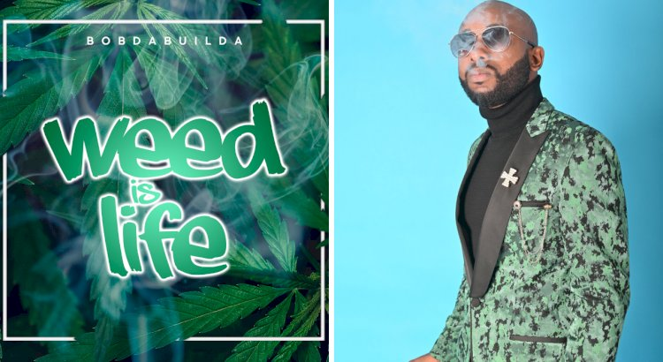 """""""Weed Is Life"""" and The Key To Empowerment Declares St. Andrew, Jamaica Native Bob Da Builda"""